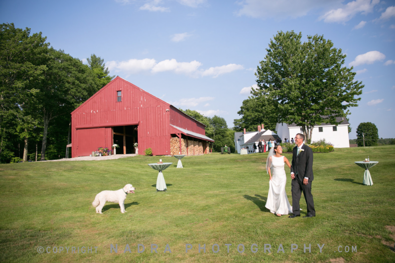 William Allen Farm Wedding - Mass DJ